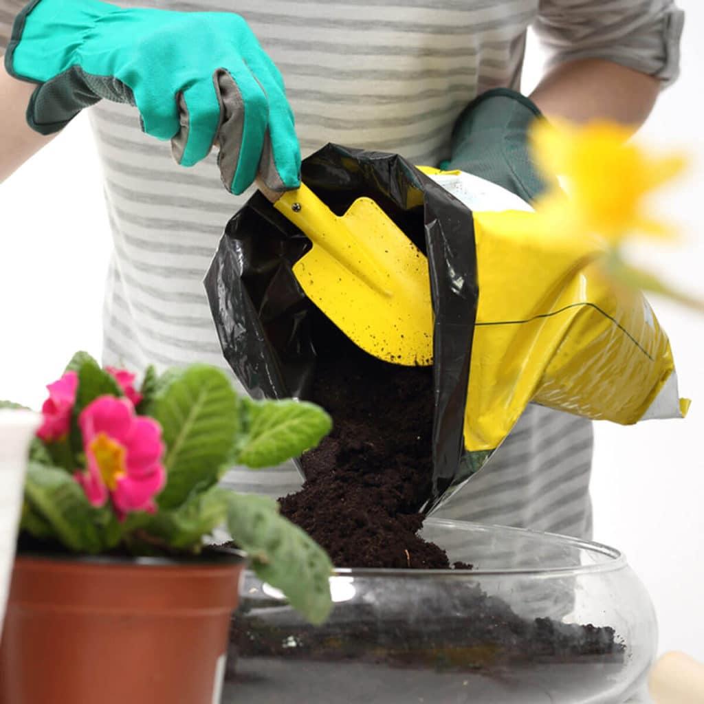 Presádzanie kvetov