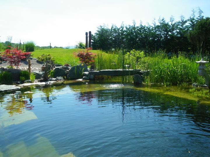 Ein schöner See in der Mitte des Gartens