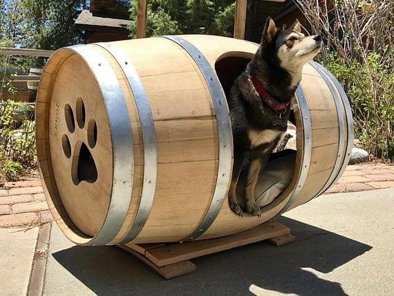 Hund im Barrel