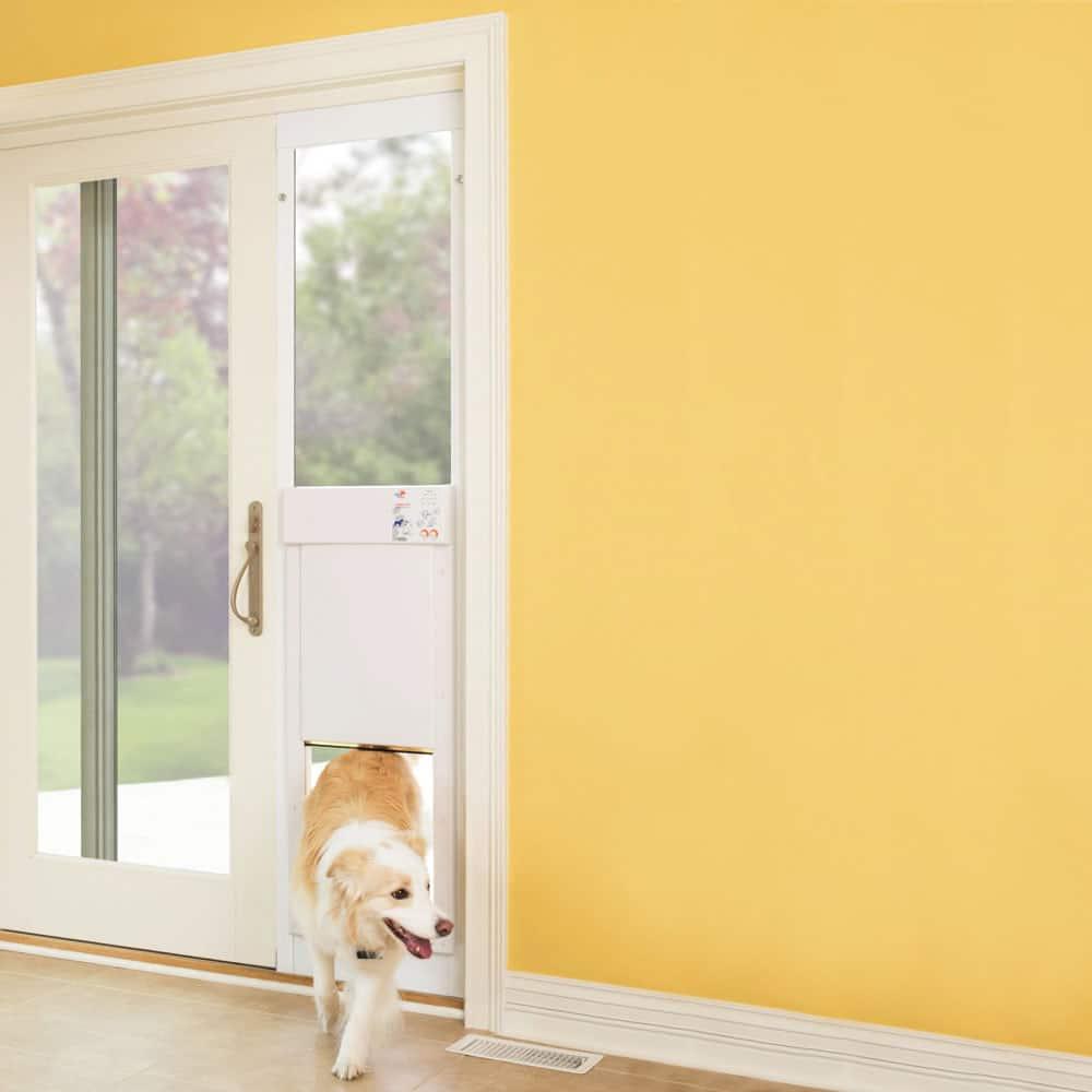 Weiße Türe für den Hund