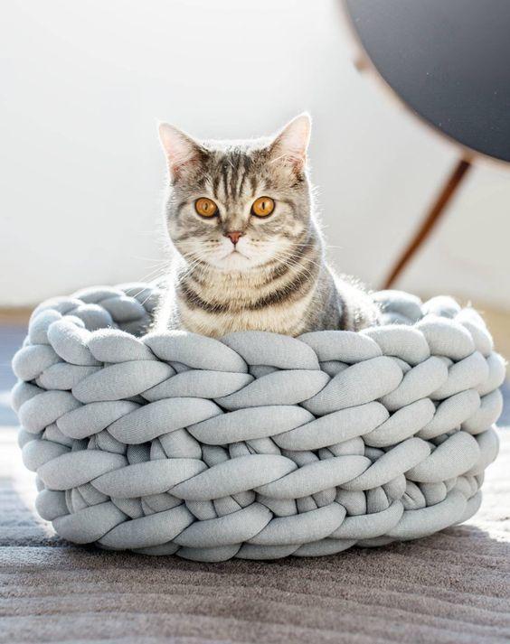 Ein Katzenkörbchen