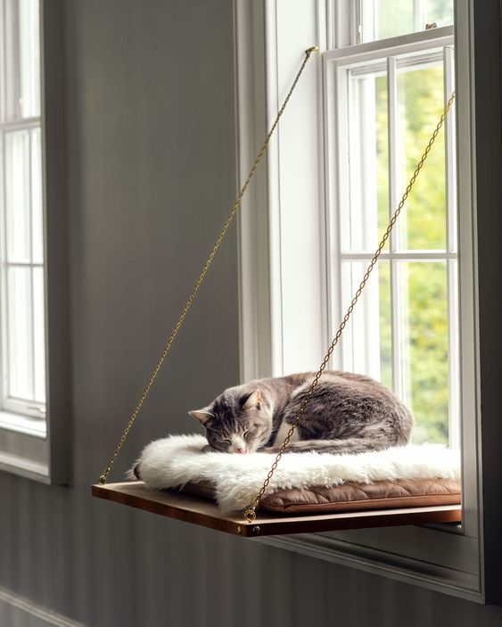 Eine Katze schläft auf einer Aufhänge-Latte