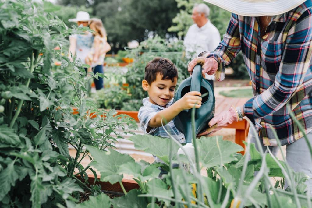 Ein kleiner Junge gießt Pflanzen in dem Garten