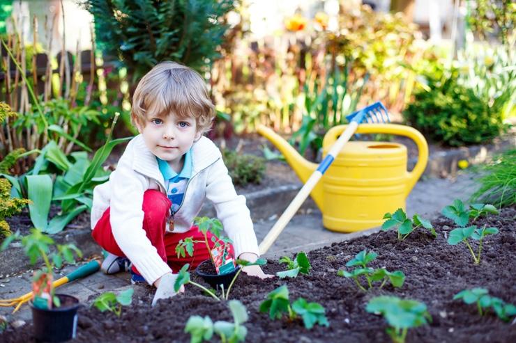 Ein kleiner Junge in dem Garten