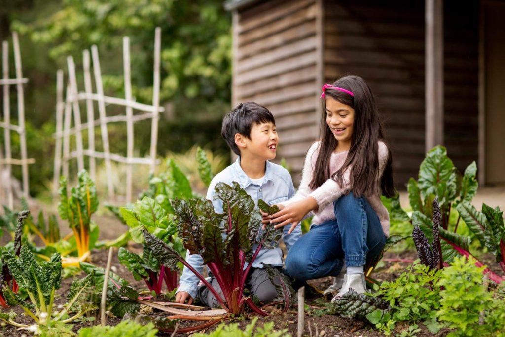 Kinder in dem Garten