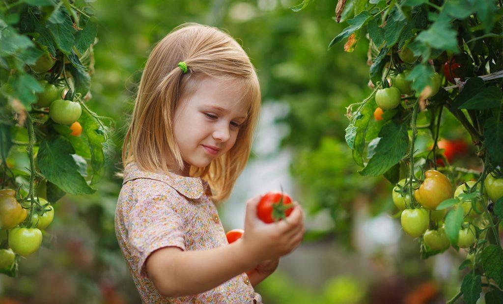 Ein Mädchen mit einer Tomate in ihrer Hand