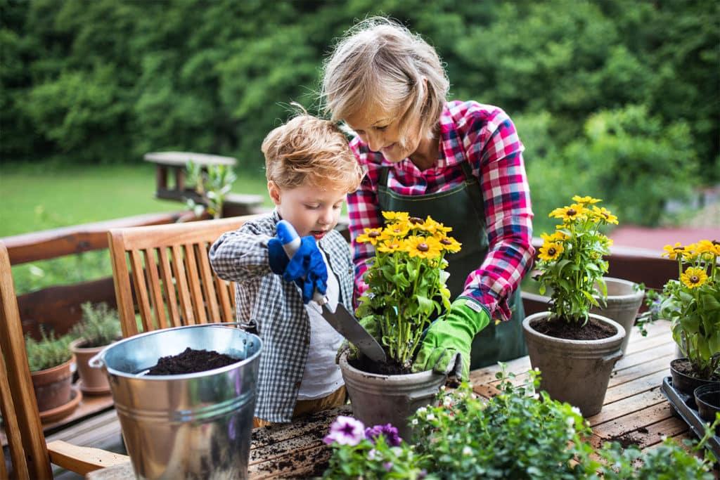Die Oma pflanzt mit ihrem Enkel die Pflanzen