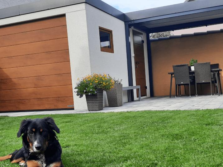 GARDEON - Foto einer Garage mit Überdachung und einem Hund