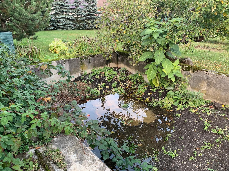 Ein biologischer Garten